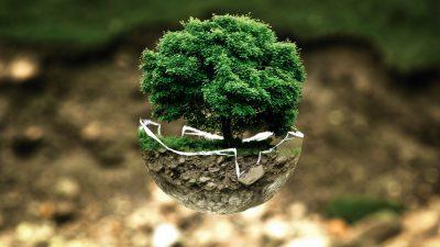 Chauffage au bois, une énergie propre ?